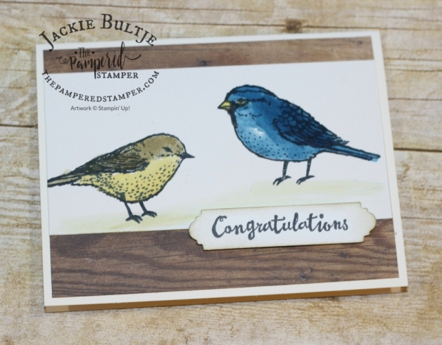 Wood Textures Paper and Best Birds with Brusho