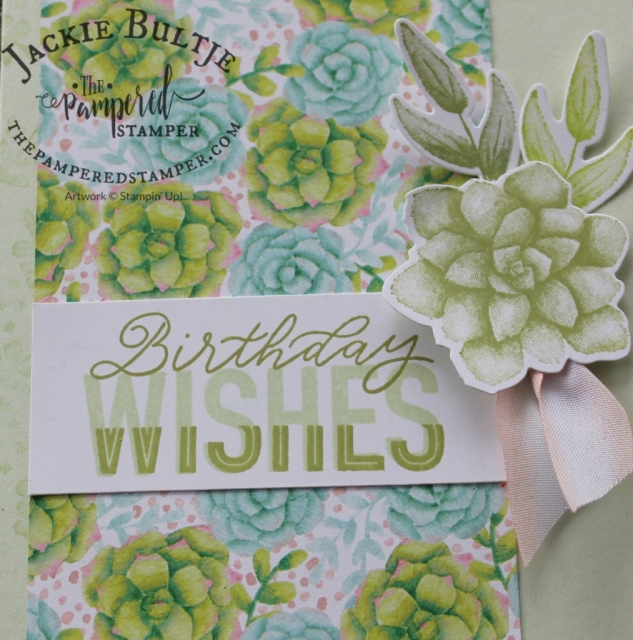 Closeup of the Painted Seasons paper and the succulent stamp.
