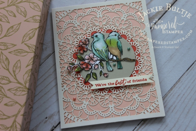 Bird Ballad card with laser-cut cards and tin