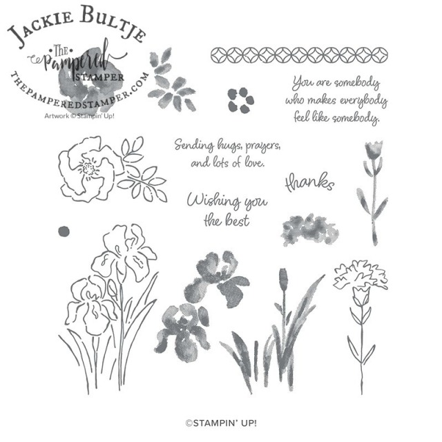 Inspiring Iris stamp set
