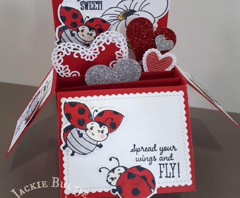 Little Ladybug Explosion Card