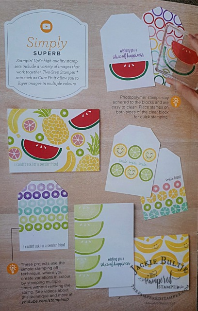 Beginner Brochure Cute Fruit
